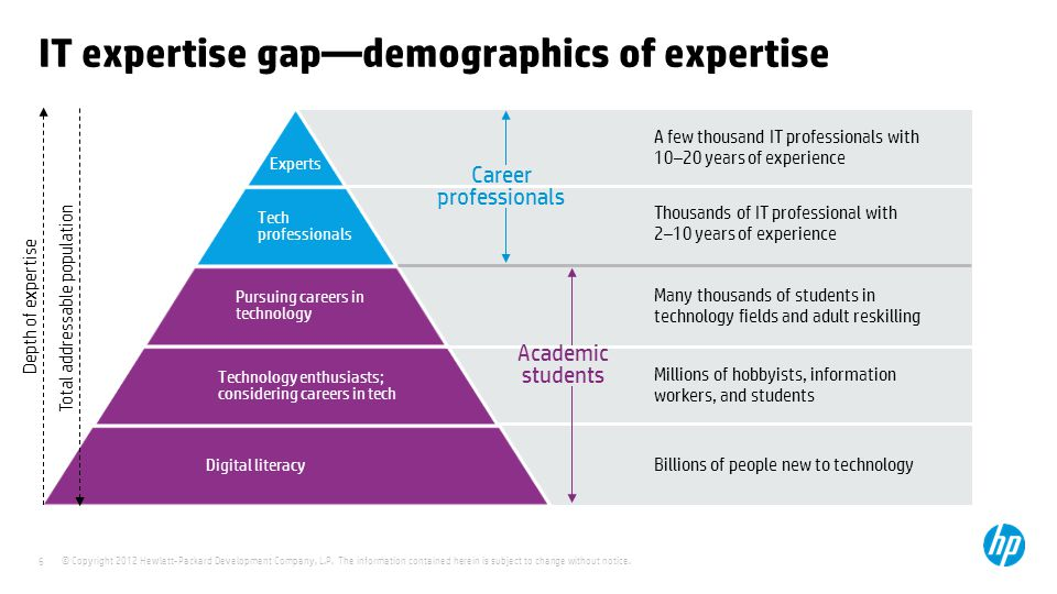 IT expertise gap—demographics of expertise