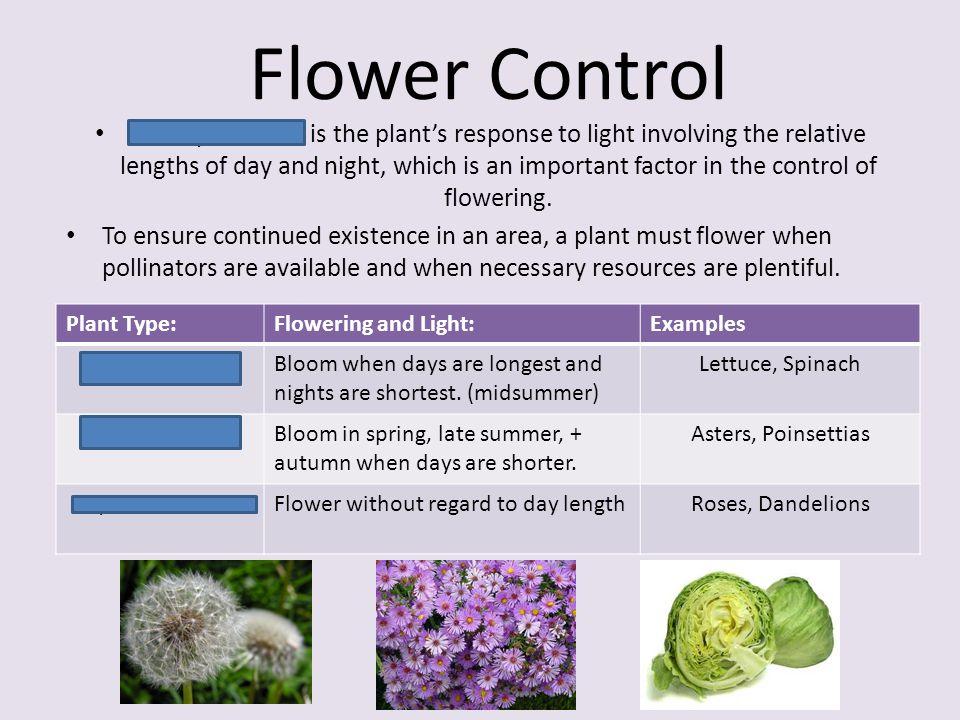 Flower Control