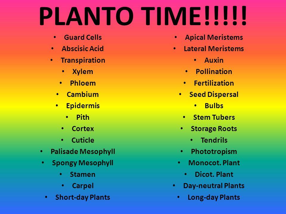 PLANTO TIME!!!!! Guard Cells Abscisic Acid Transpiration Xylem Phloem