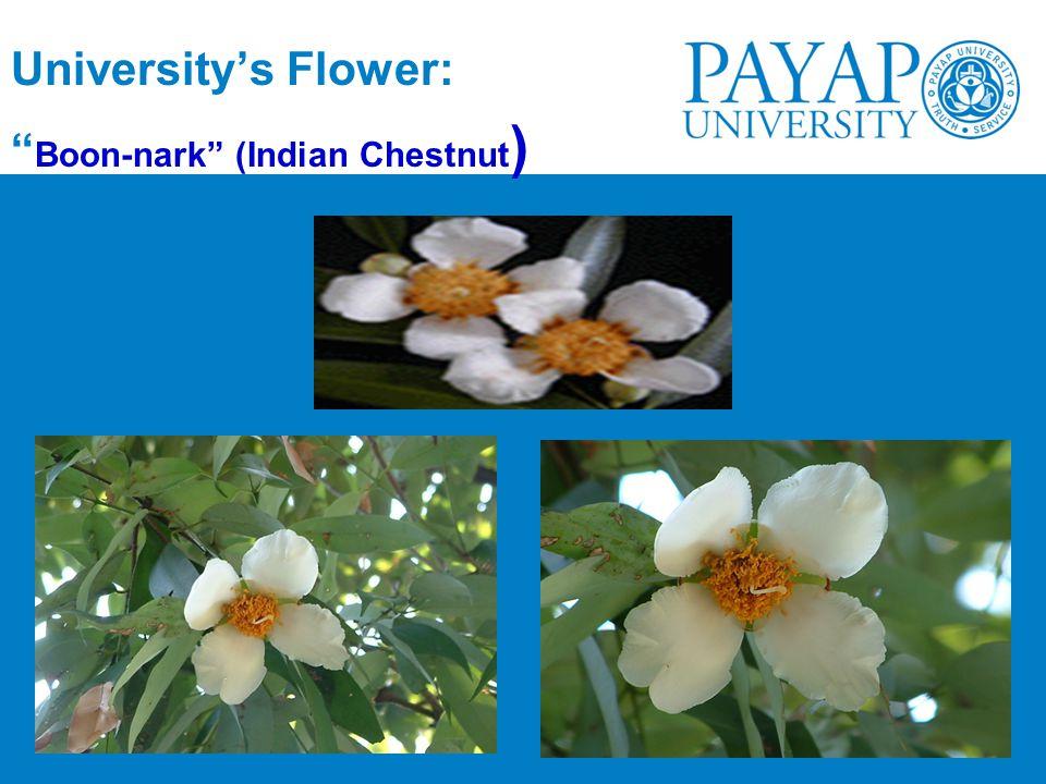 University's Flower: Boon-nark (Indian Chestnut)