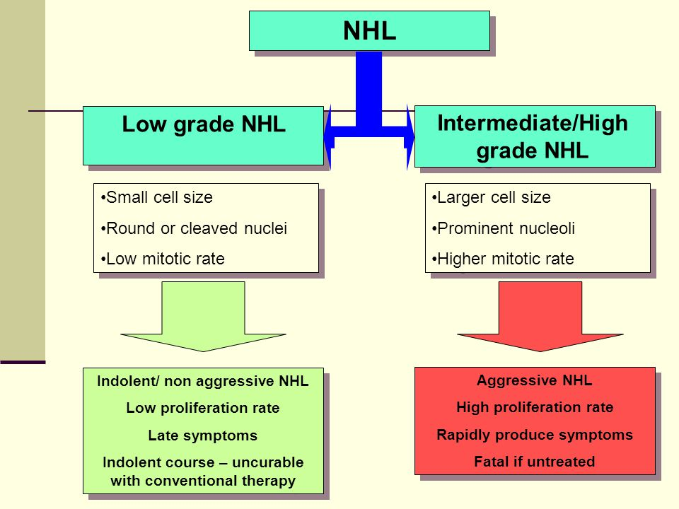 NHL Low grade NHL Intermediate/High grade NHL Small cell size