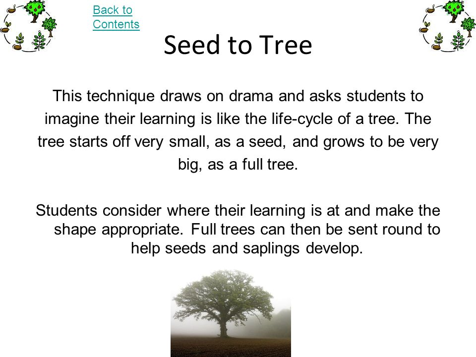 Seed to Tree This technique draws on drama and asks students to