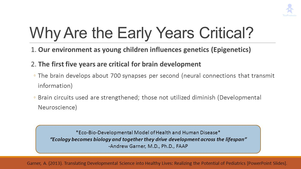 Why Are the Early Years Critical