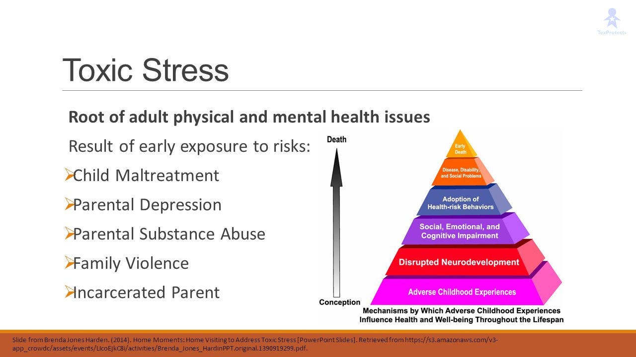 Toxic Stress Root of adult physical and mental health issues