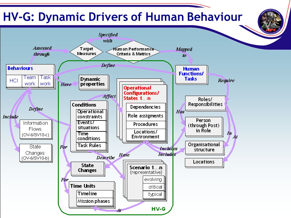 HV-G: Dynamic Drivers of Human Behaviour