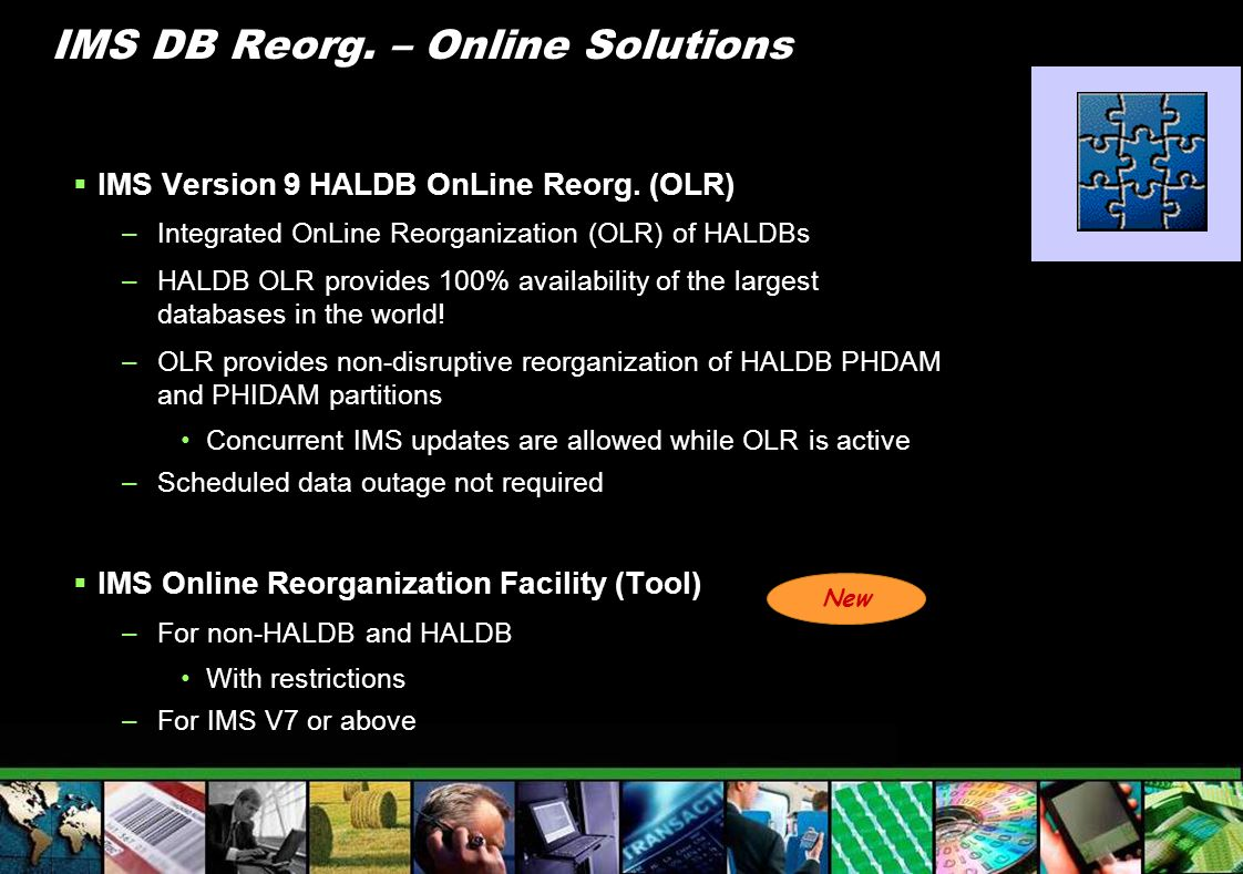 IMS DB Reorg. – Online Solutions