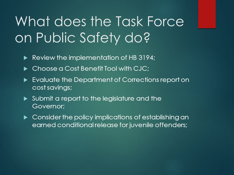 What does the Task Force on Public Safety do