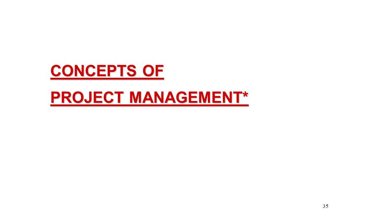 CONCEPTS OF PROJECT MANAGEMENT*