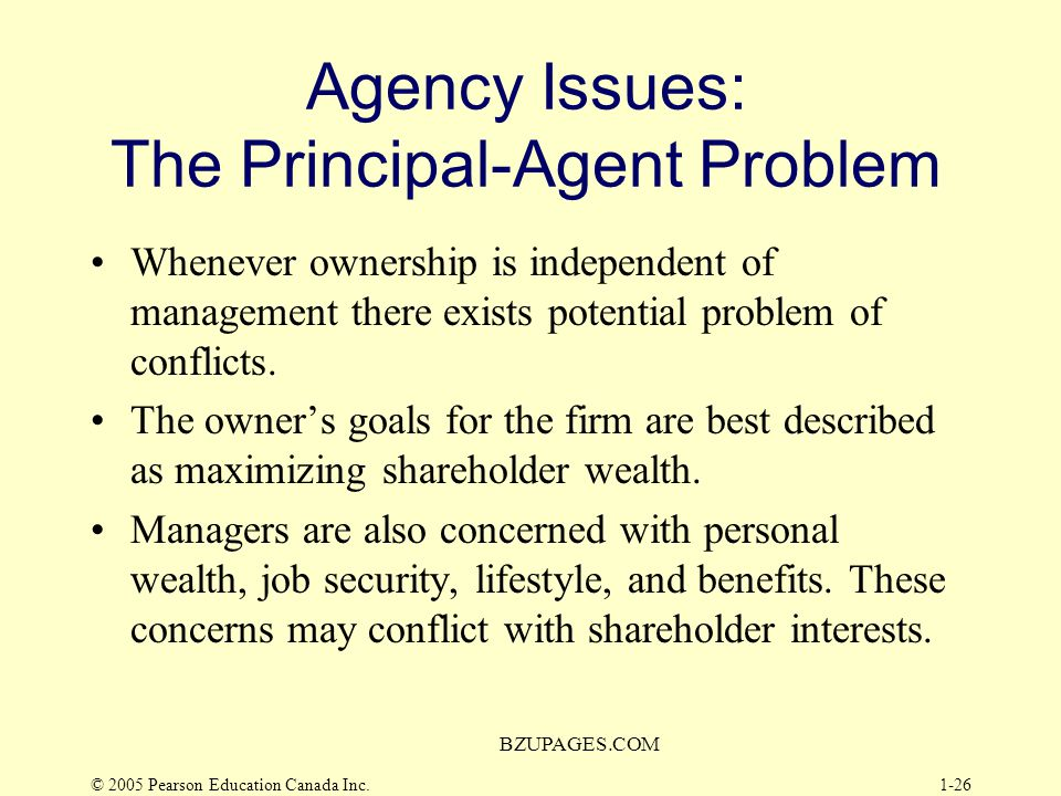 Agency Issues: The Principal-Agent Problem