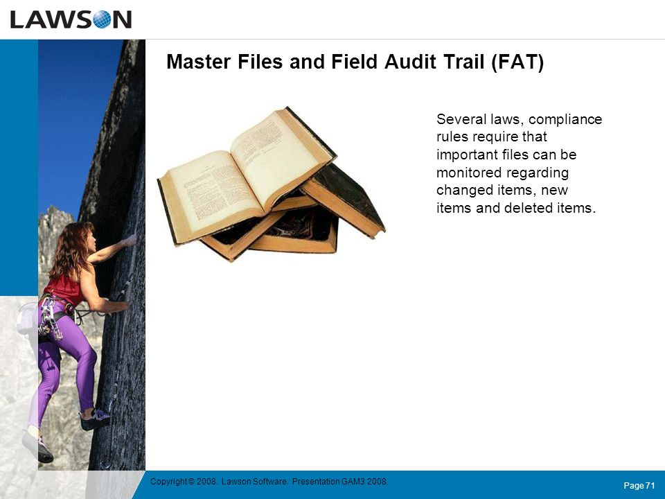 Master Files and Field Audit Trail (FAT)
