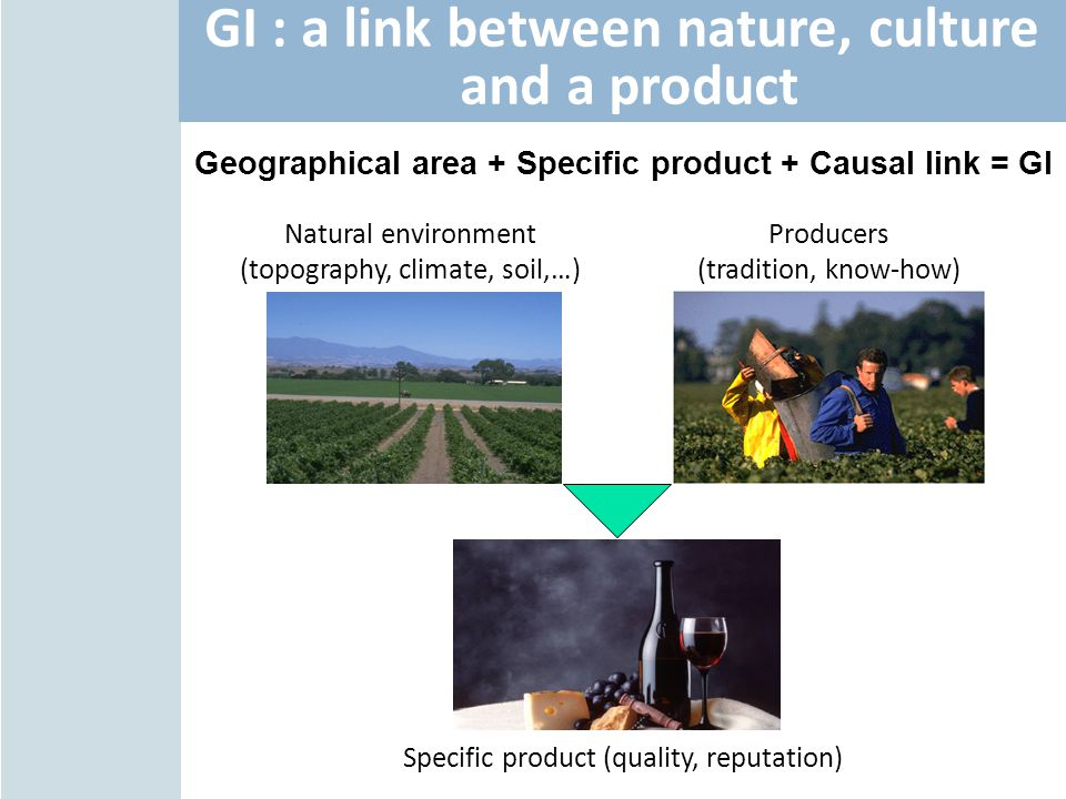 GI : a link between nature, culture and a product