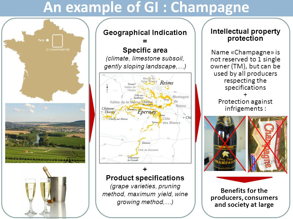 An example of GI : Champagne
