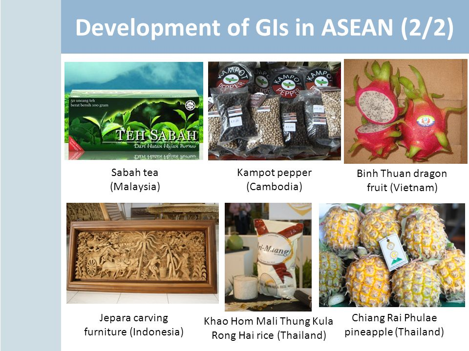 Development of GIs in ASEAN (2/2)