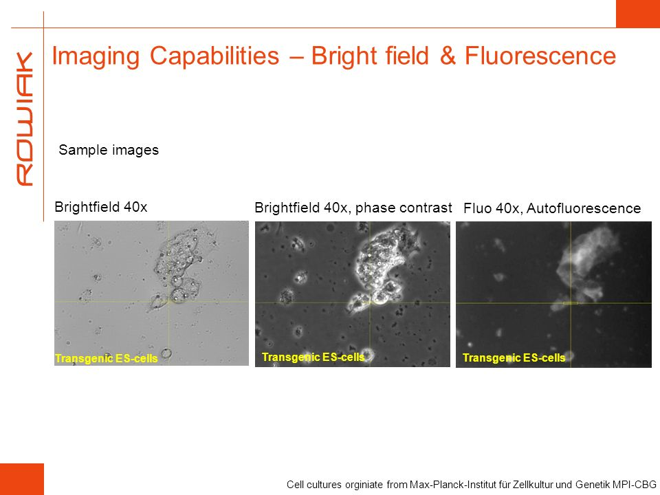 Imaging Capabilities – Bright field & Fluorescence