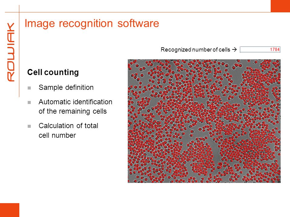 Image recognition software