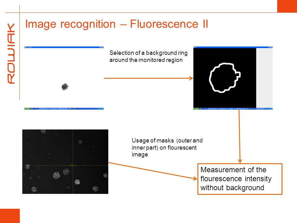 Image recognition – Fluorescence II