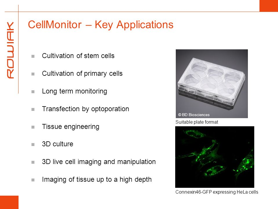 CellMonitor – Key Applications