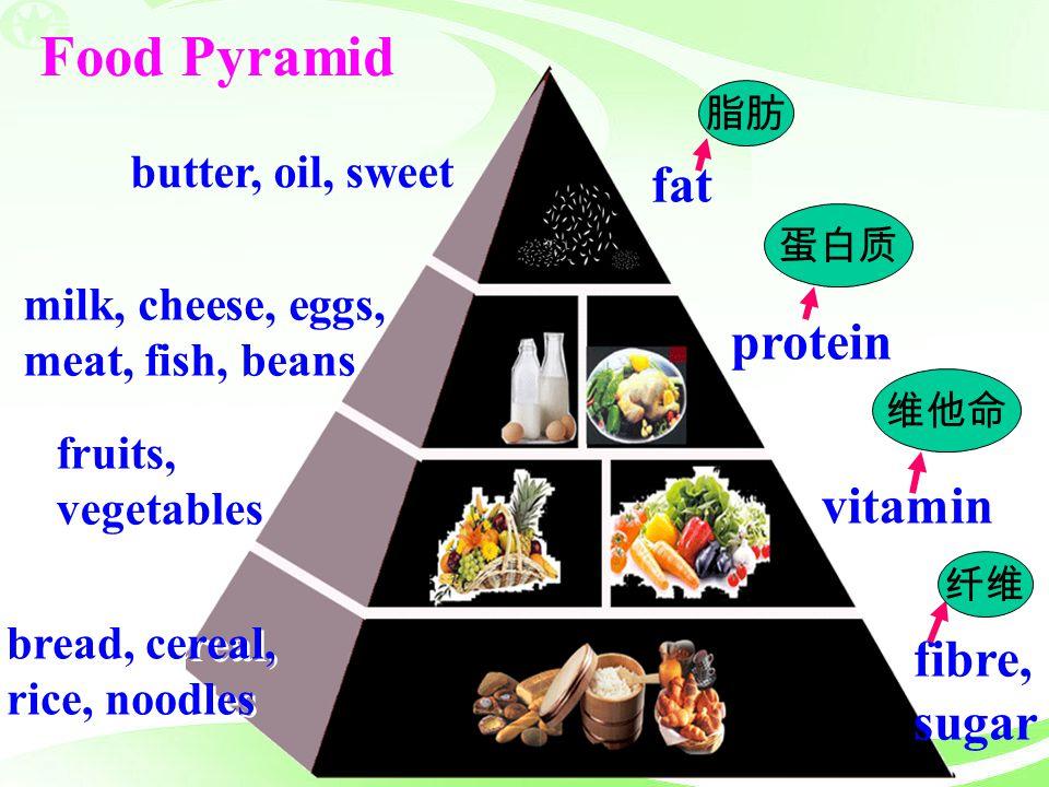 Food Pyramid fat protein vitamin fibre, sugar butter, oil, sweet