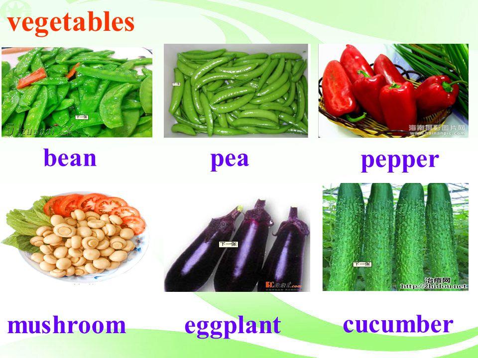 vegetables bean pea pepper mushroom eggplant cucumber