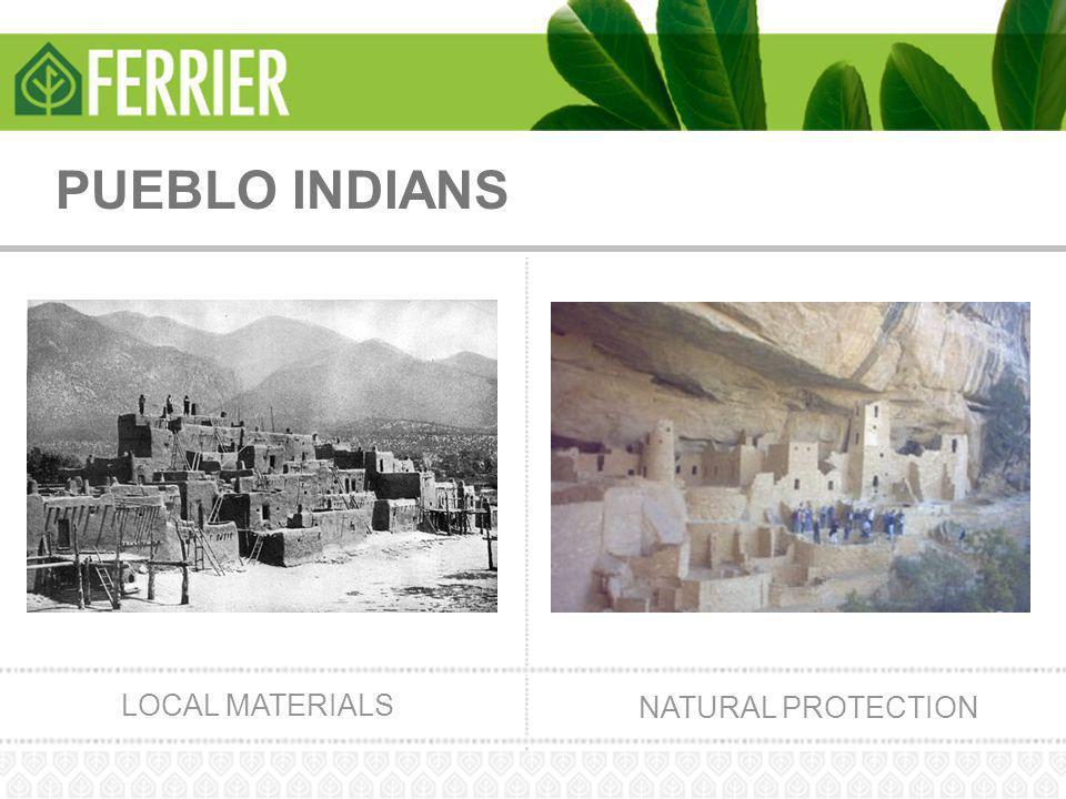 PUEBLO INDIANS LOCAL MATERIALS NATURAL PROTECTION