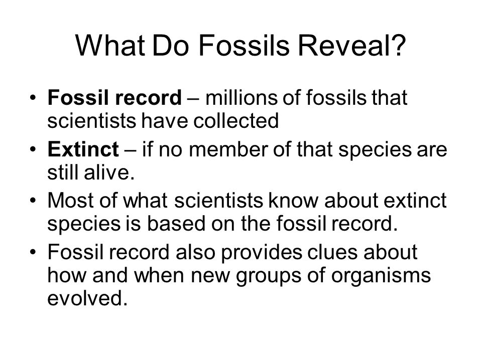 What Do Fossils Reveal Fossil record – millions of fossils that scientists have collected. Extinct – if no member of that species are still alive.