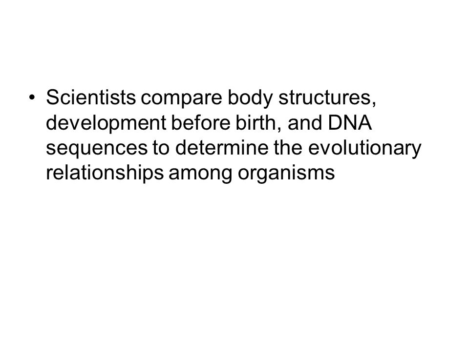 Scientists compare body structures, development before birth, and DNA sequences to determine the evolutionary relationships among organisms