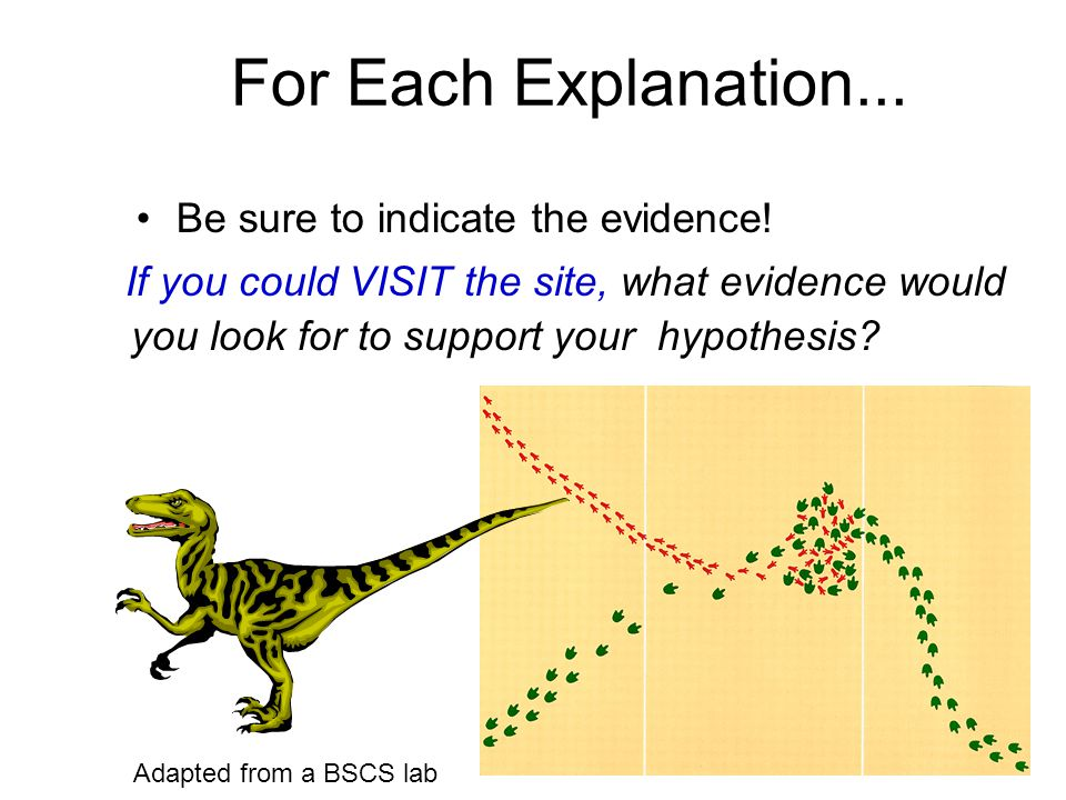 For Each Explanation... Be sure to indicate the evidence!
