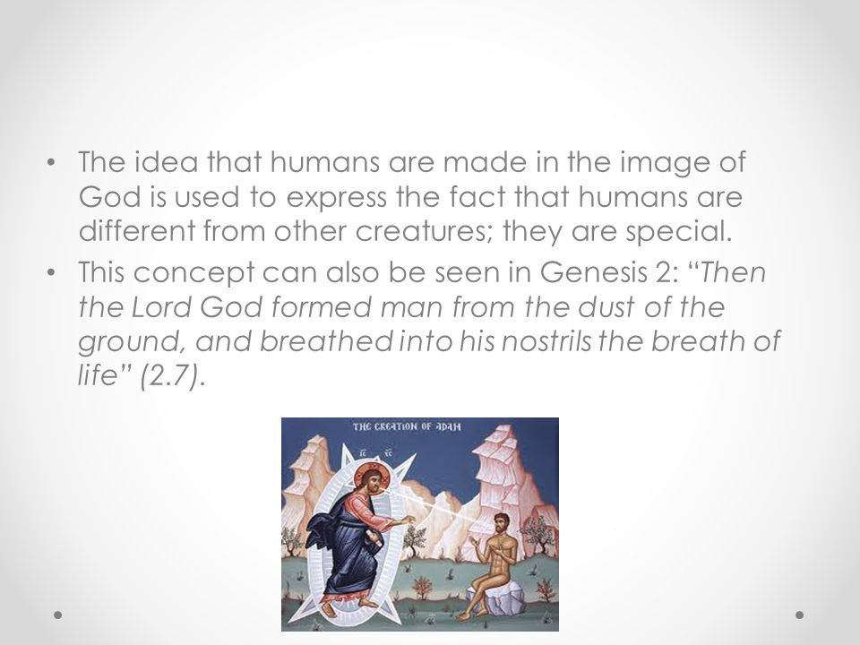 The idea that humans are made in the image of God is used to express the fact that humans are different from other creatures; they are special.
