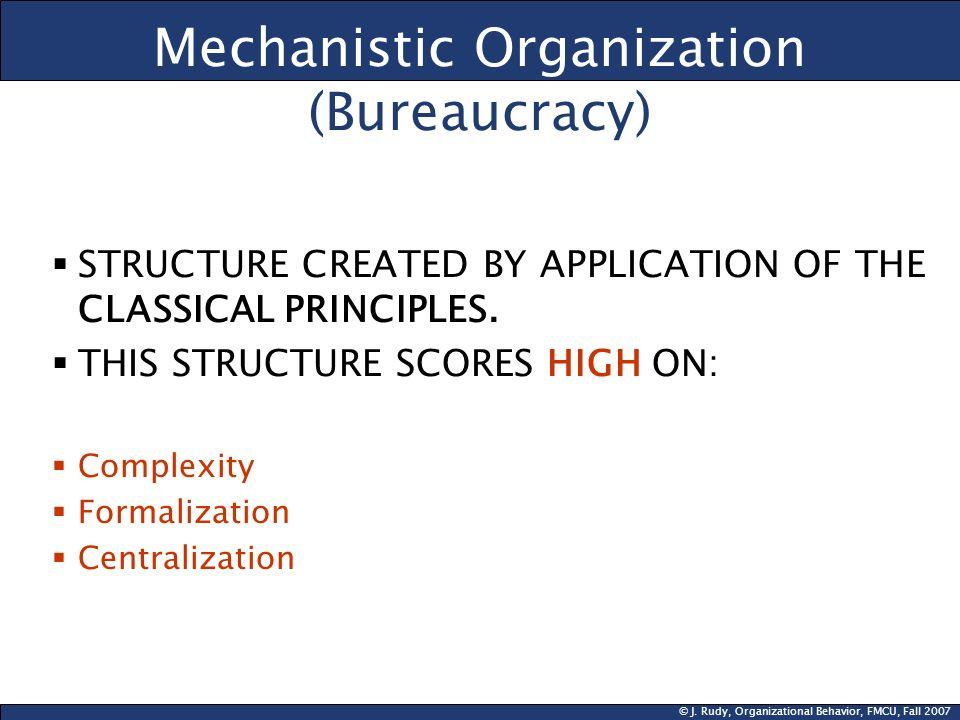 Mechanistic Organization (Bureaucracy)