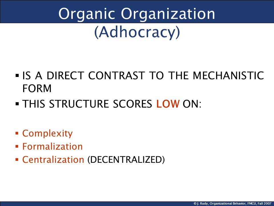 Organic Organization (Adhocracy)