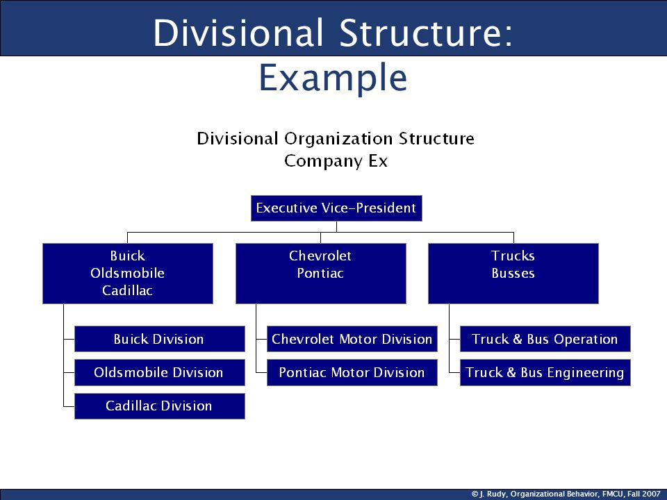 Divisional Structure: Example