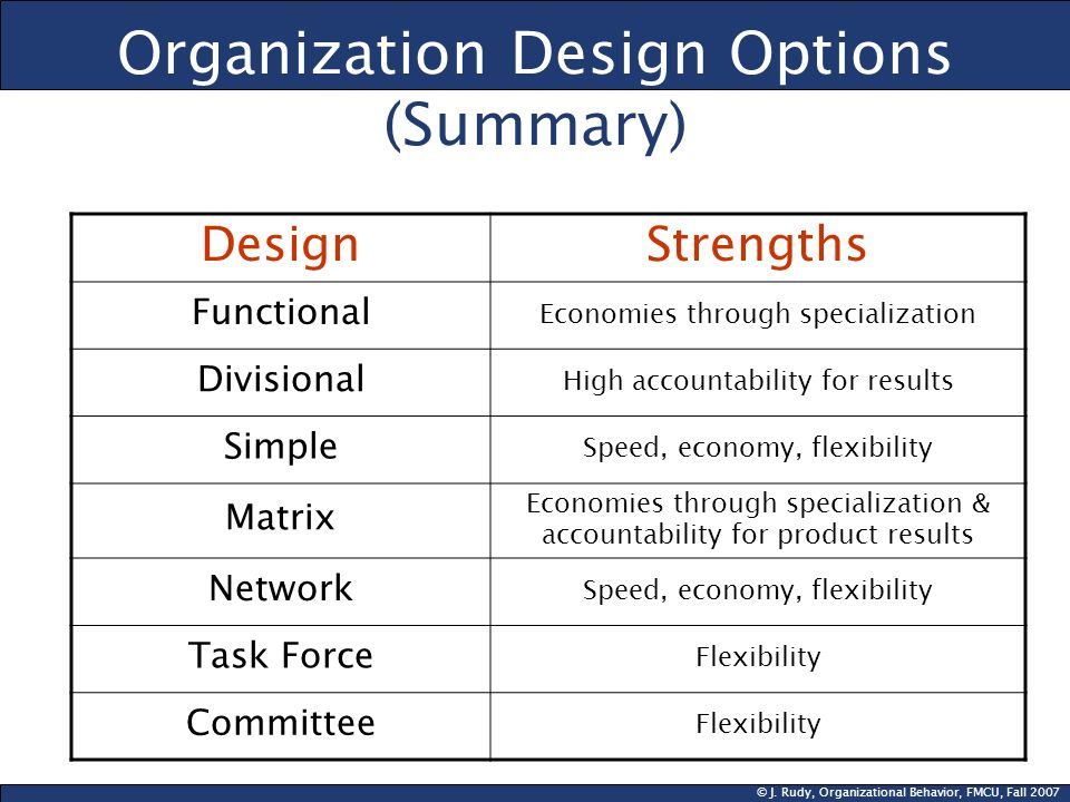 Organization Design Options (Summary)