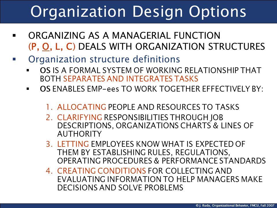 Organization Design Options