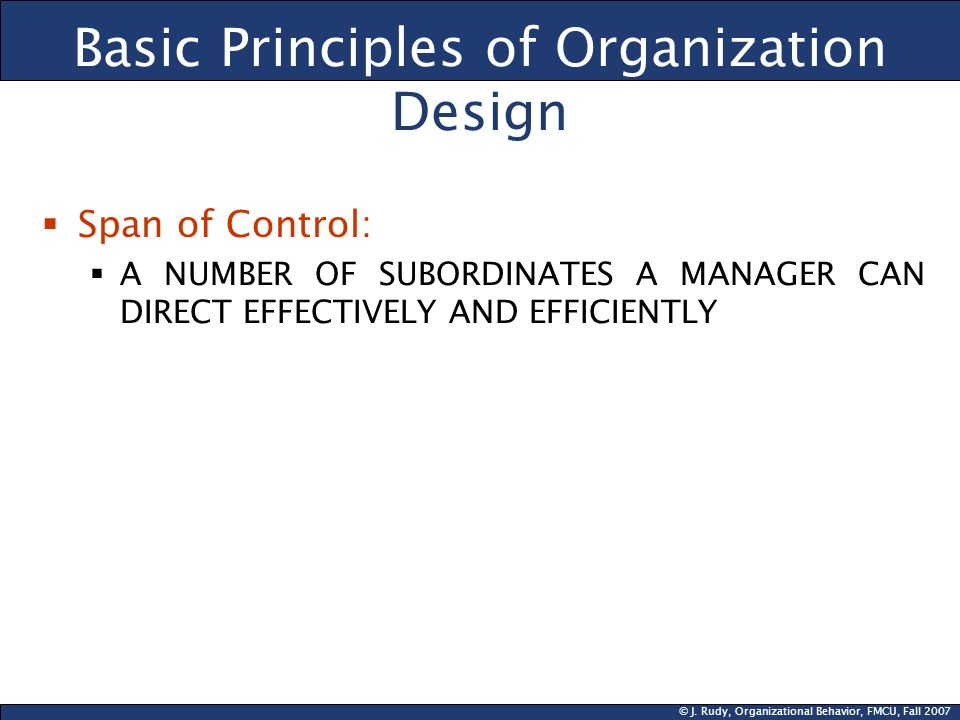 Basic Principles of Organization Design