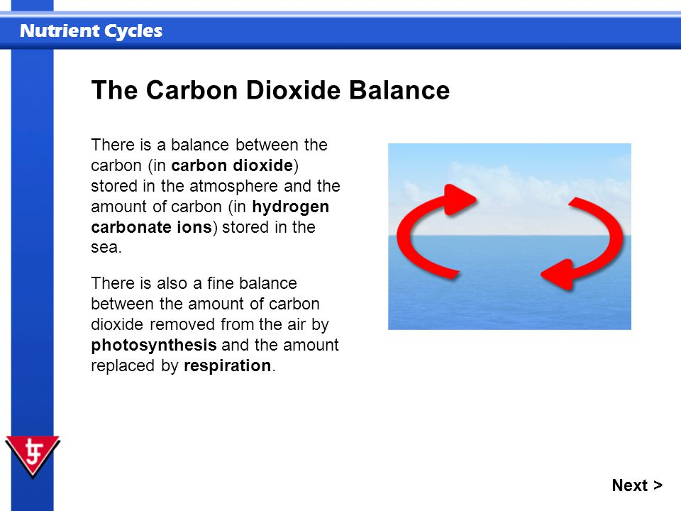 The Carbon Dioxide Balance