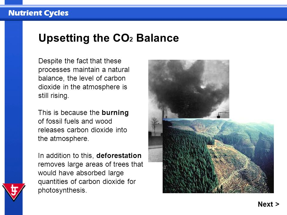 Upsetting the CO2 Balance