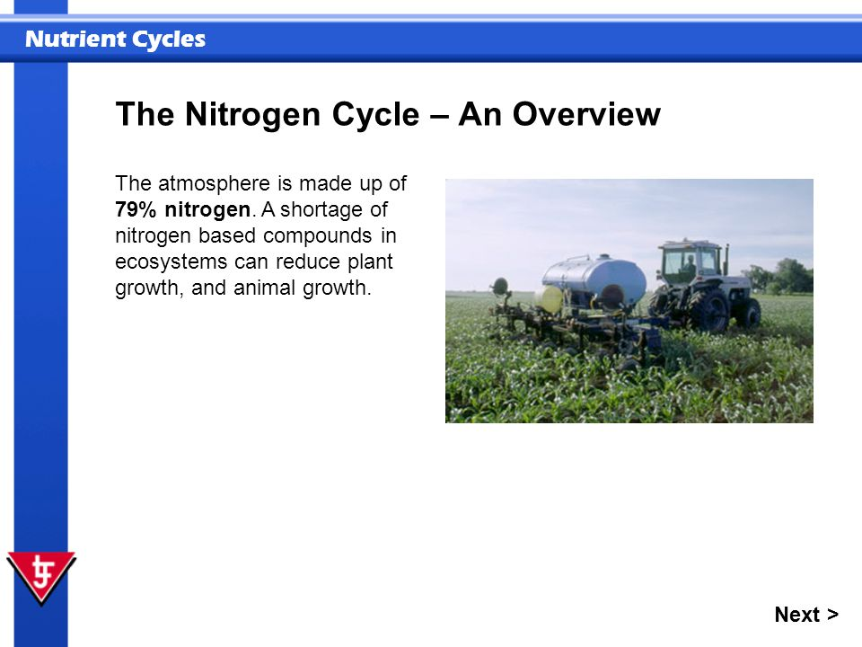 The Nitrogen Cycle – An Overview
