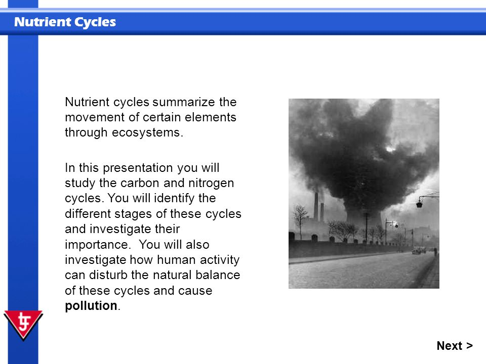 Nutrient cycles summarize the movement of certain elements through ecosystems.