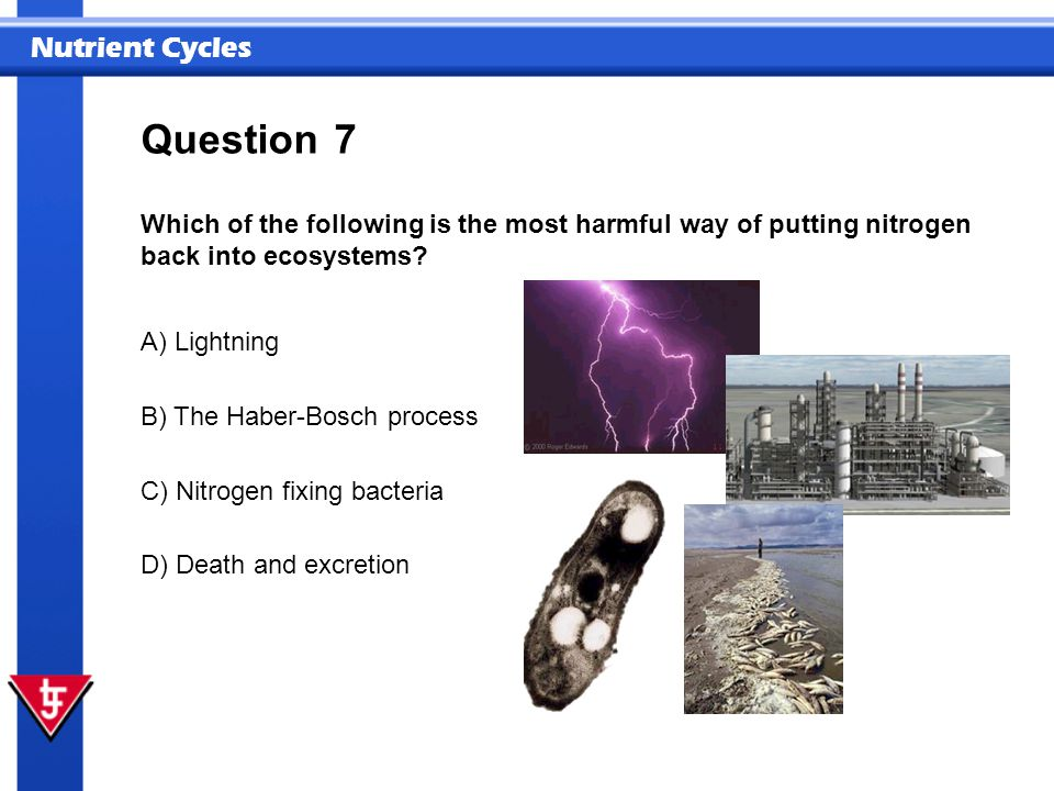 Question 7. Which of the following is the most harmful way of putting nitrogen back into ecosystems