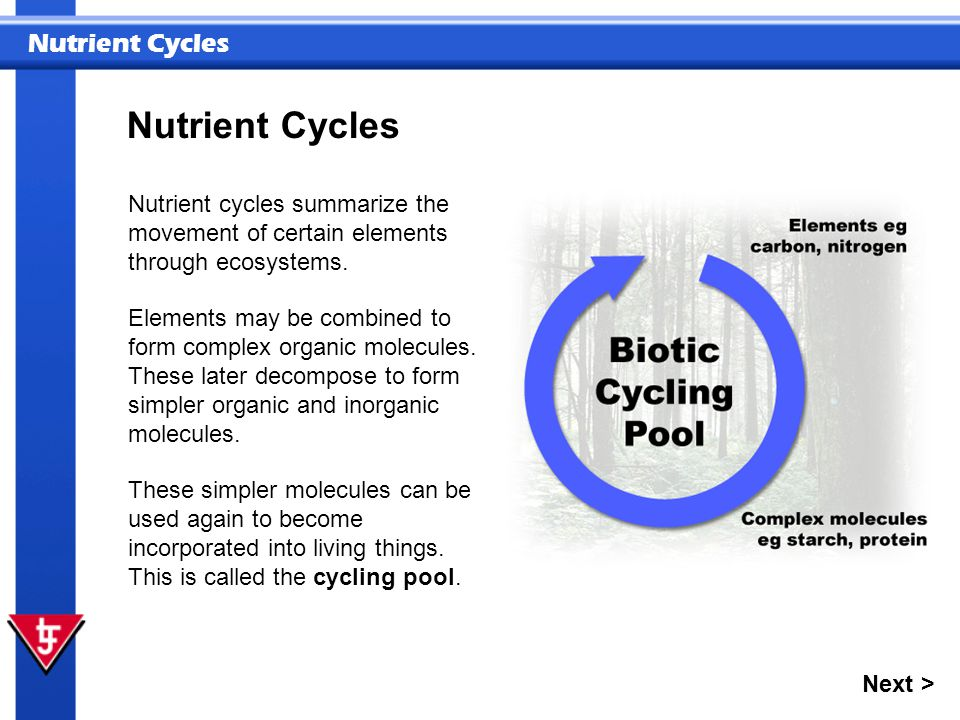 Nutrient Cycles Nutrient cycles summarize the movement of certain elements through ecosystems.