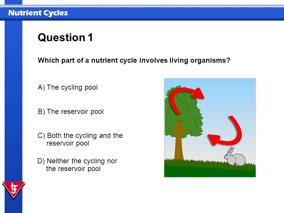 Question 1 Which part of a nutrient cycle involves living organisms