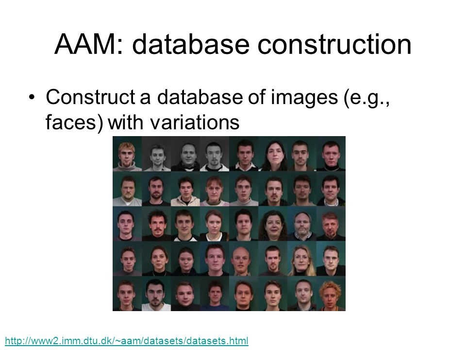 AAM: database construction