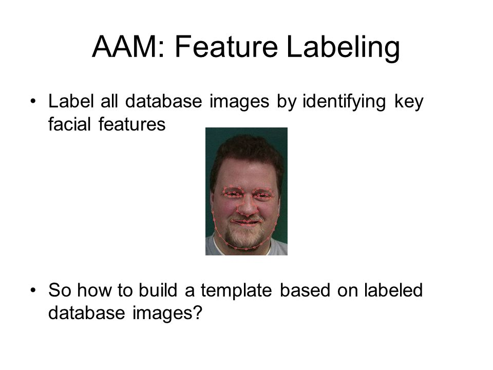 AAM: Feature Labeling Label all database images by identifying key facial features.