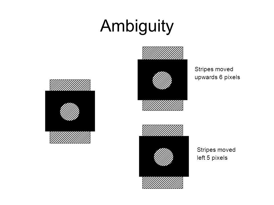 Ambiguity Stripes moved upwards 6 pixels Stripes moved left 5 pixels
