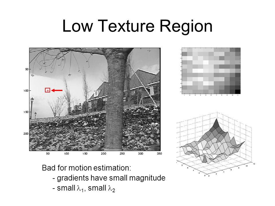 Low Texture Region Bad for motion estimation: