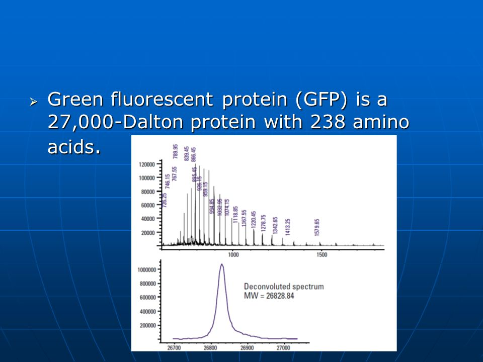 Green fluorescent protein (GFP) is a 27,000-Dalton protein with 238 amino acids.