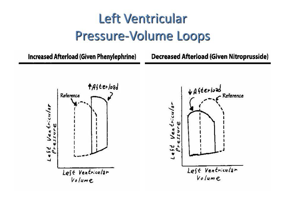 Left Ventricular Pressure-Volume Loops