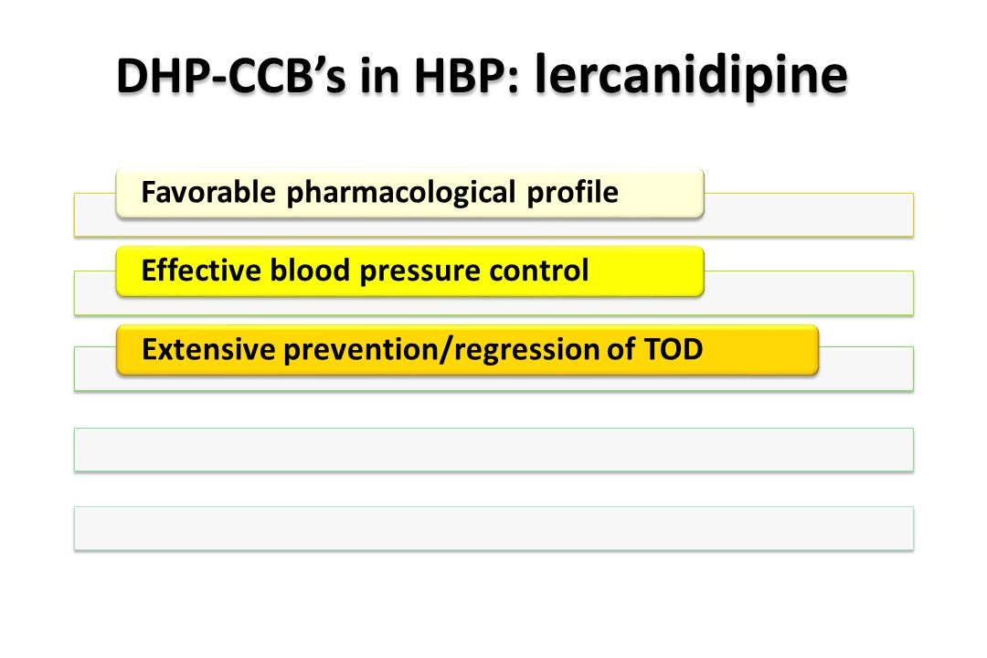 DHP-CCB's in HBP: lercanidipine