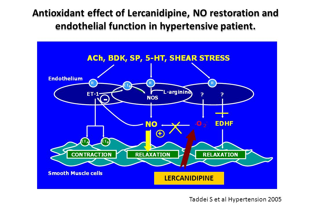 Antioxidant effect of Lercanidipine, NO restoration and endothelial function in hypertensive patient.