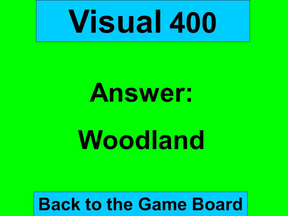 Visual 400 Answer: Woodland Back to the Game Board